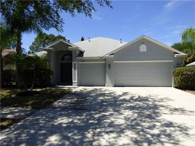 Apollo Beach Single Family Home For Sale: 7625 Nottinghill Sky Drive