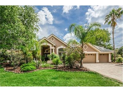 Palm Harbor Single Family Home For Sale: 4075 Presidents Boulevard