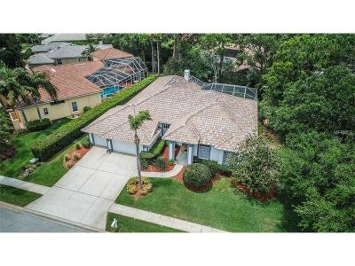 Oldsmar Single Family Home For Sale: 4901 Turtle Creek Trail