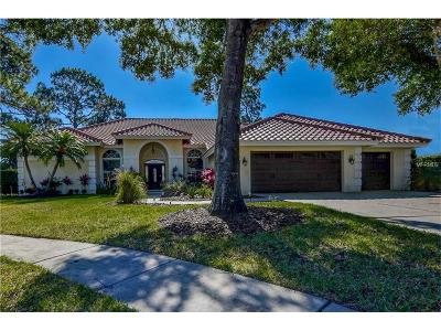 Palm Harbor Single Family Home For Sale: 4033 Presidential Drive