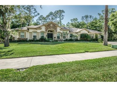 Oldsmar Single Family Home For Sale: 1880 E Lake Woodlands Parkway