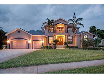 Gulfport Single Family Home For Sale: 5909 Pelican Bay Plaza S