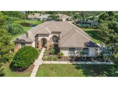 Palm Harbor Single Family Home For Sale: 3730 Jacmel Way