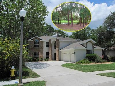 Oldsmar Single Family Home For Sale: 2333 Warwick Drive