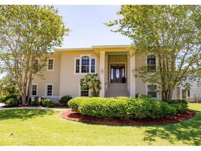 Largo Single Family Home For Sale: 8683 Merrimoor Boulevard E