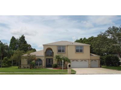 Clearwater Single Family Home For Sale: 2209 Belchery Court Drive