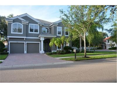 Safety Harbor Single Family Home For Sale: 2328 Messenger Circle