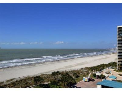 Clearwater Beach Condo For Sale: 1400 Gulf Boulevard #207