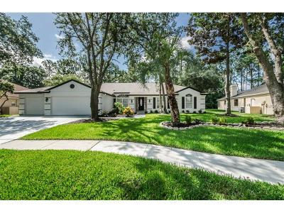 Palm Harbor Single Family Home For Sale: 4740 Brayton Terrace S