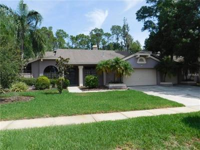 Oldsmar Single Family Home For Sale: 160 Greenhaven Circle