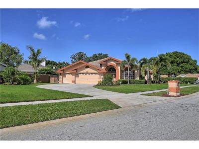Seminole Single Family Home For Sale: 8403 Meadowbrook Drive E