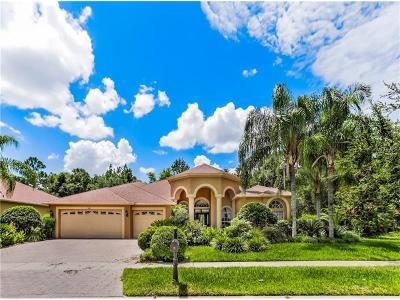 Tampa Single Family Home For Sale: 5001 Ashington Landing Drive