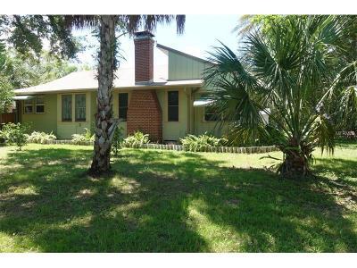 Dunedin Single Family Home For Sale: 1053 Bass Boulevard
