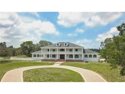 Tarpon Springs Single Family Home For Sale: 2000 N Highland Avenue