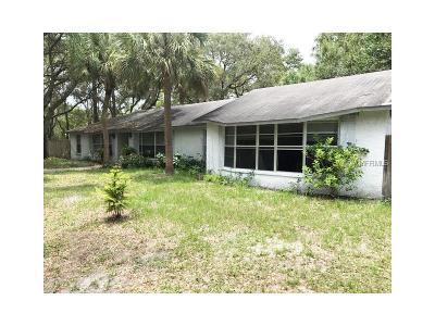 Oldsmar FL Single Family Home For Sale: $749,900