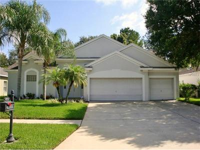 Palm Harbor FL Single Family Home For Sale: $378,000