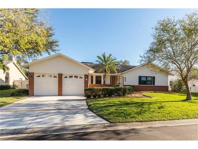 St Petersburg Single Family Home For Sale: 808 Marco Drive NE
