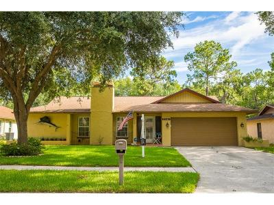 Palm Harbor Single Family Home For Sale: 3561 Fairway Forest Drive