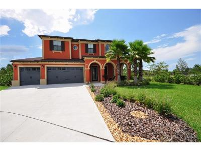 Wesley Chapel Single Family Home For Sale: 28802 Perilli Place