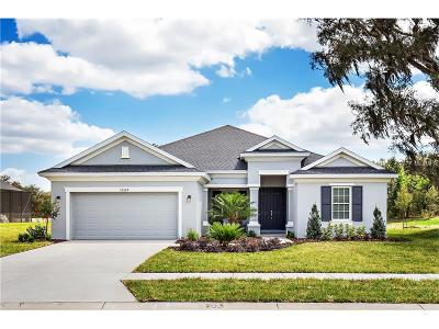 Lutz Single Family Home For Sale: 19210 Lake Allen Road