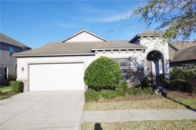Tampa Single Family Home For Sale: 19356 Yellow Clover Drive