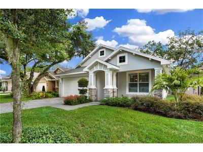 Tampa Single Family Home For Sale: 922 Oak Stone Drive