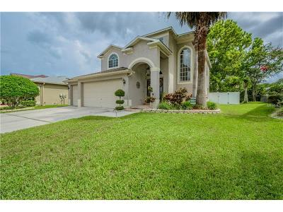 Oldsmar Single Family Home For Sale: 4932 Dunnwoody Place