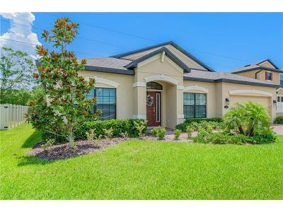 Oldsmar Single Family Home For Sale: 714 Wellington Court