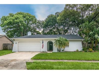 Palm Harbor Single Family Home For Sale: 2030 Groveland Road
