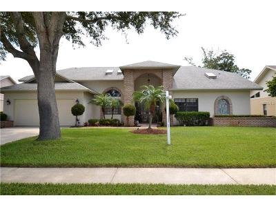 Clearwater Single Family Home For Sale: 3373 E Lake Shore Lane
