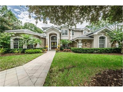 Oldsmar Single Family Home For Sale: 1668 E. Lake Woodlands Parkway