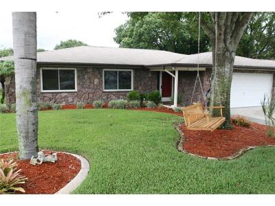 Palm Harbor Single Family Home For Sale: 3270 Causeway Drive