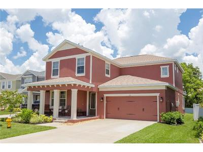 Safety Harbor Single Family Home For Sale: 132 Philippe Grand Court