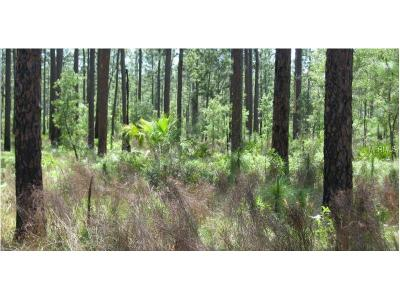 Plant City Residential Lots & Land For Sale: Frank Griffin