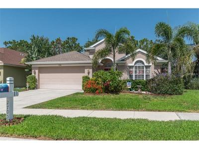 Holiday Single Family Home For Sale: 2705 Hawk Roost Court