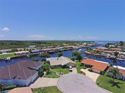 New Port Richey Single Family Home For Sale: 4901 Forecastle Drive