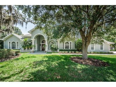 Tarpon Springs Single Family Home For Sale: 168 Rue Des Chateaux