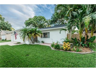 Palm Harbor Single Family Home For Sale: 2030 Groveland Road