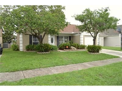 Tampa Single Family Home For Sale: 10935 Brightside Drive