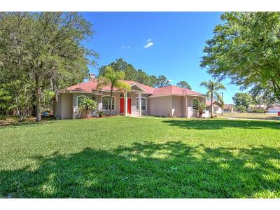 Wesley Chapel Single Family Home For Sale: 27249 Raven Brook Road