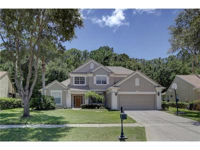 Palm Harbor Single Family Home For Sale: 4308 Ellinwood Boulevard