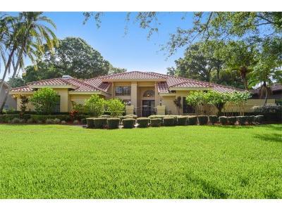 Safety Harbor Single Family Home For Sale: 2407 Huntington Boulevard