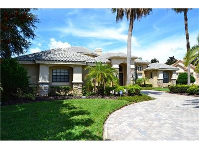 Palm Harbor FL Single Family Home For Sale: $725,000