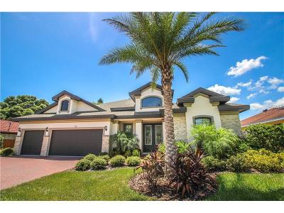 Safety Harbor Single Family Home For Sale: 905 Palmetto Drive