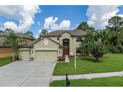 Land O Lakes FL Single Family Home For Sale: $499,900