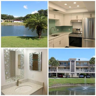 Hernando County, Hillsborough County, Pasco County, Pinellas County Condo For Sale: 936 Virginia Street #104