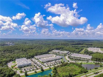 Oldsmar Commercial For Sale: Forest Lakes Boulevard