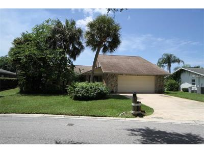 New Port Richey Single Family Home For Sale: 4254 Marine Parkway