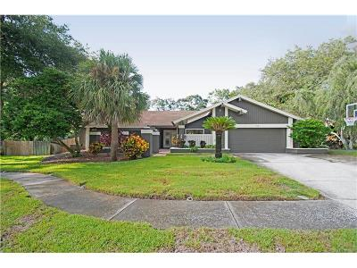 Palm Harbor Single Family Home For Sale: 1321 Indian Trail N