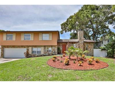 Seminole Single Family Home For Sale: 8580 139th Lane